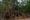 8. Angkor