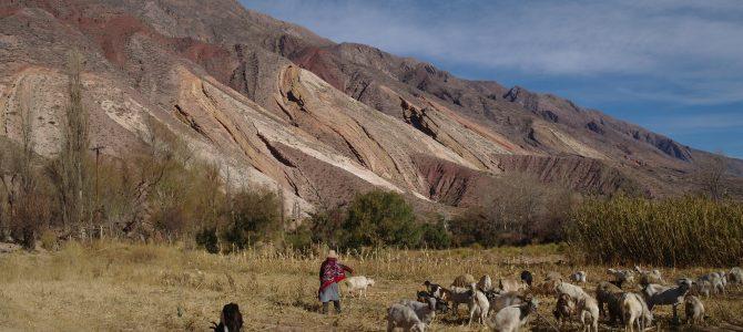 A la découverte des Andes argentines… en vidéo !