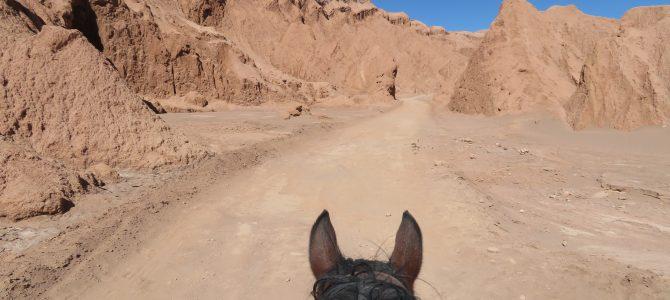 De sable, de sel et de pierre : le désert d'Atacama !