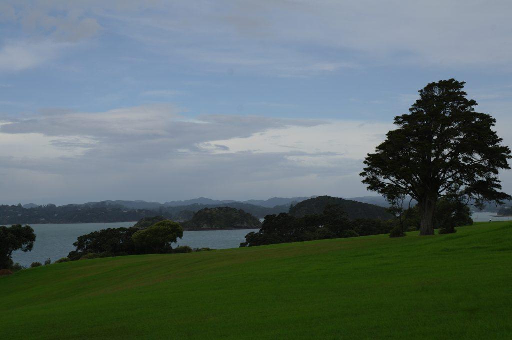 13. Bay of islands (Waitangi, Paia) (2)
